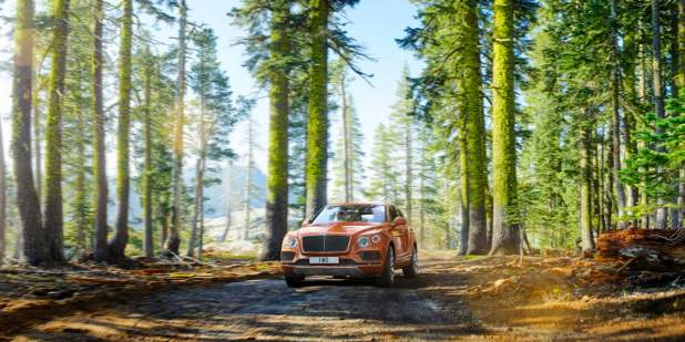 Orange Bentayga driving through the forest on a dirt road surrounded by trees | Bentley Motors