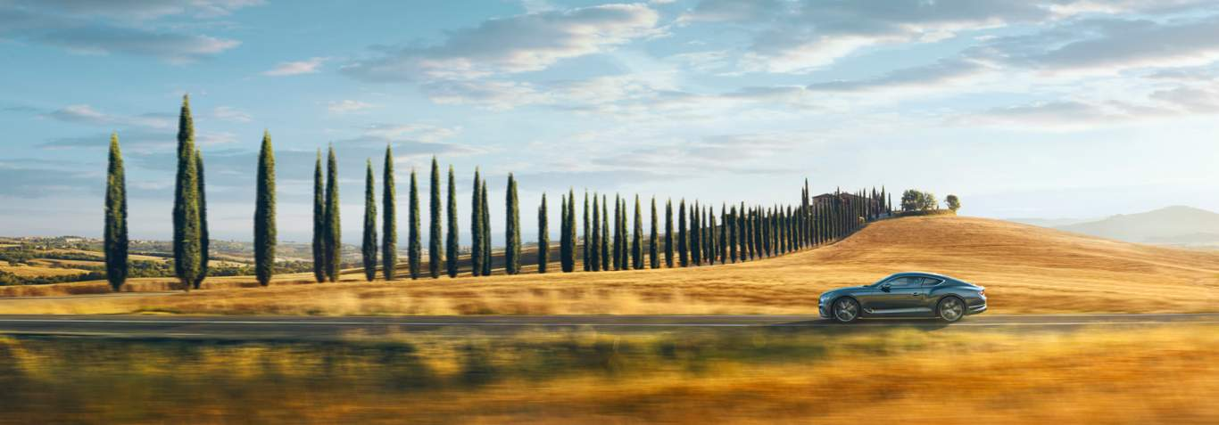 New Bentley Continental GT driving in Italy by a golden field and a line of trees